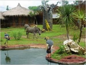binatan didalam Savanah Batu Secret Zoo