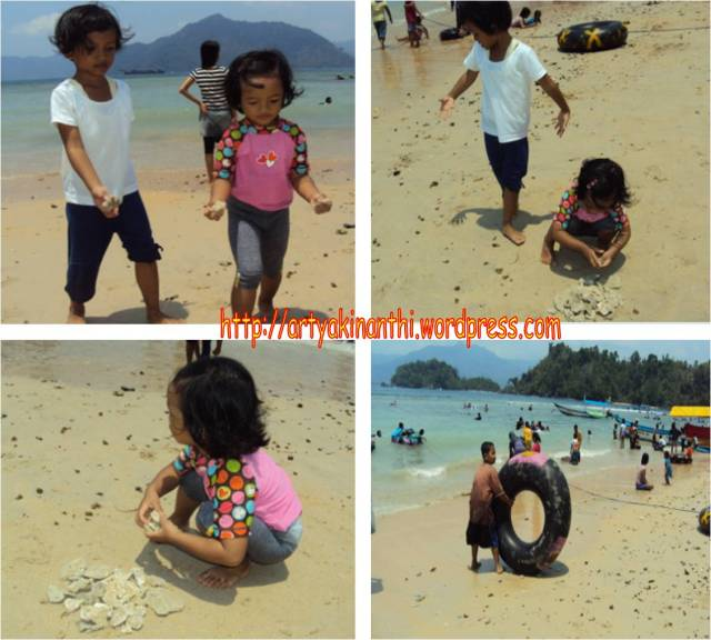 Duo krucil kinan dan mbak dila mengumpulkan kerang dan pecahan karang, sementara mas naufal menyewa ban untuk pelampung