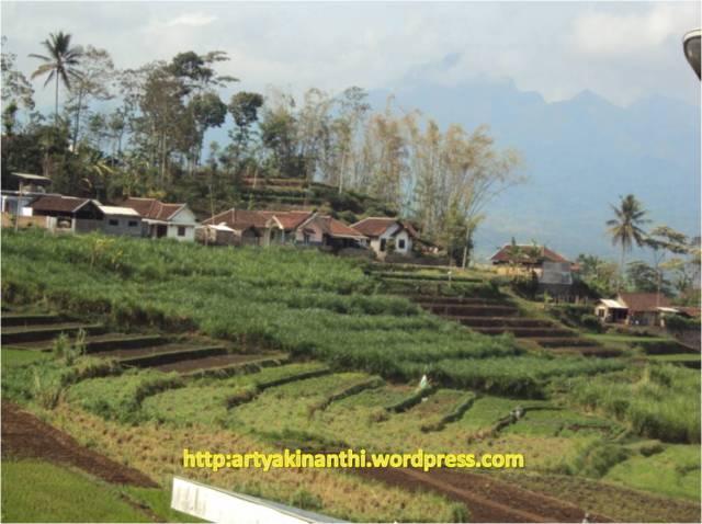 Pemandangan sisi lain waduk Selorejo Ngantang - Malang