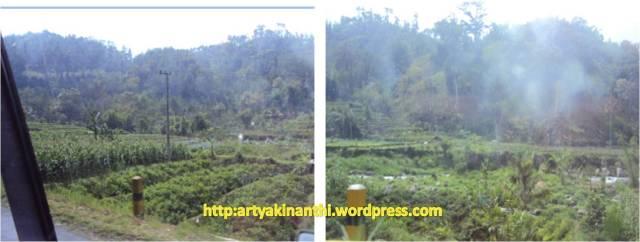Sepanjang jalan ngantang kearah Batu Malang