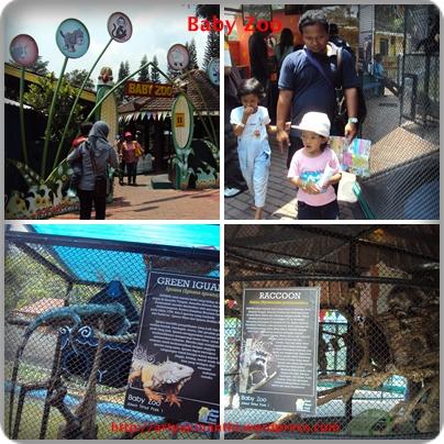 Wahana Baby Zoo