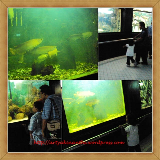 Wahana Aquarium