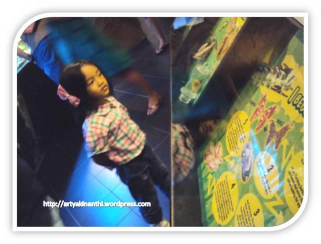 Kinan melihat metamorfosis kupu kupu