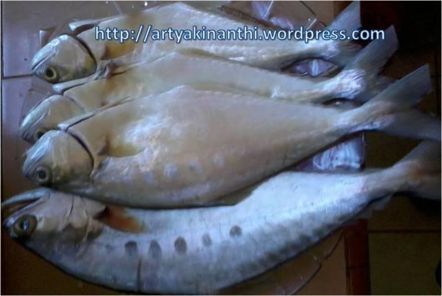 Ikan Talang Segar